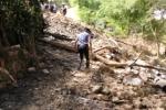 Roghi, a Cefalù danni a turismo e aree naturalistiche: l'allarme del sindaco
