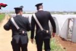 Rumeno ucciso nella campagne di Mazara, le immagini della piantagione - Video
