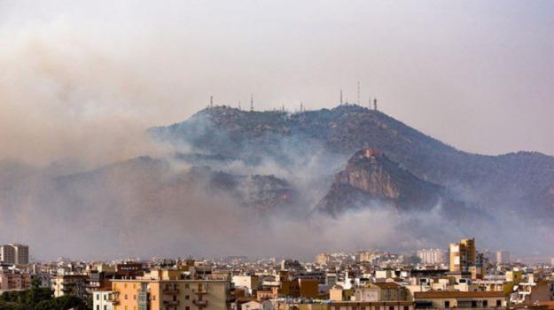 incendio monte pellegrino, Emilio Arcuri, Leoluca Orlando, Sergio Marino, Palermo, Cronaca
