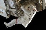 Rosmarino e melograno aiutano la salute degli astronauti