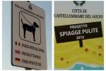 Animali liberi di scorrazzare in spiaggia: le foto da Castellammare