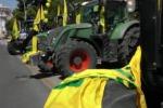 """Protesta per il grano, in 5mila marciano su Palermo: """"Persi 120 milioni di valore"""" - Video"""