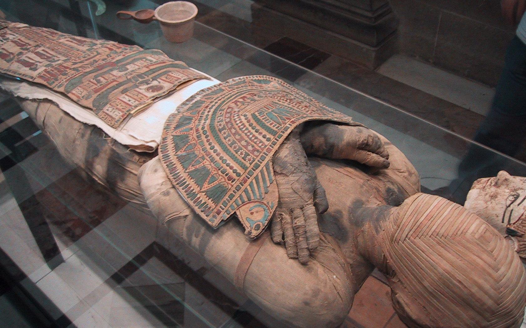 Scoperta mummia della regina nefertari al museo egizio
