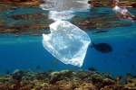 Ambiente, divieto di utilizzo dei sacchetti di plastica a Salina