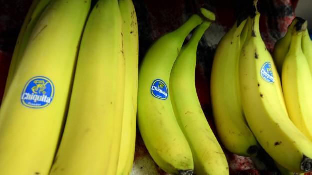 banane, funghi, Sicilia, Società