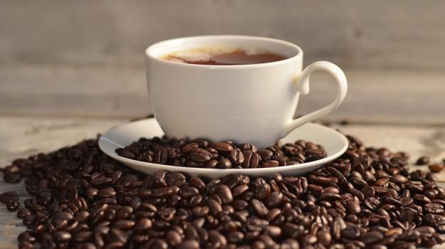 caffè, DNA, Sicilia, Vita