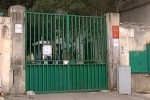 Canile di Palermo quasi svuotato, i lavori possono partire