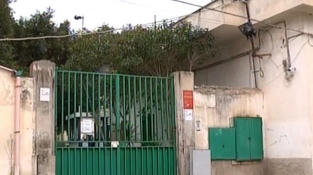 associazione animalista, canile di palermo, comune di palermo, danni canile, Palermo, Cronaca