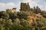 Valle dei Templi, riaperto dopo un mese il giardino della «Kolymbetra»