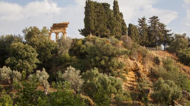 Giardino della Kolymbetra, Valle dei Templi, Agrigento, Cultura