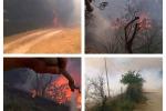 Incendi nell'Ennese: le foto della devastazione