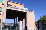 Le mani della mafia sul mercato ortofrutticolo di Palermo, confisca da 150 milioni