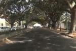 Ecco dove hanno rubato i cavi di rame: le immagini da viale Diana a Palermo - Video