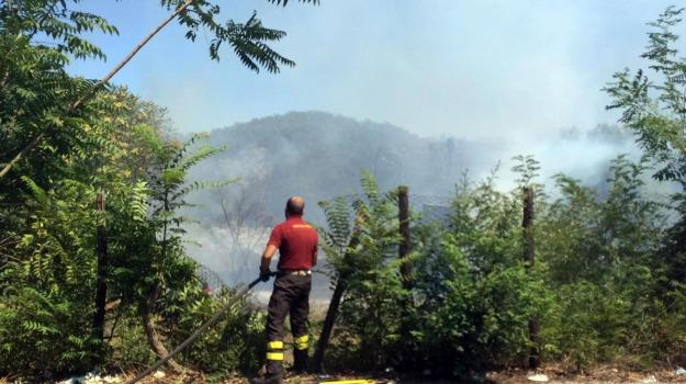 incendi, Sicilia, Cronaca, Cronache dell'agricoltura