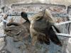 Incidente sul lavoro a Piazza Armerina, due condanne