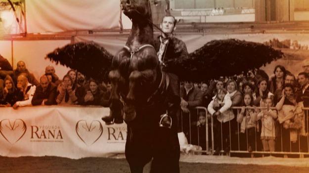 cavalli, Custonaci, Trapani, Cultura