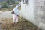 Campo nomadi di Palermo, intervento di pulizia dopo l'incendio dei rifiuti