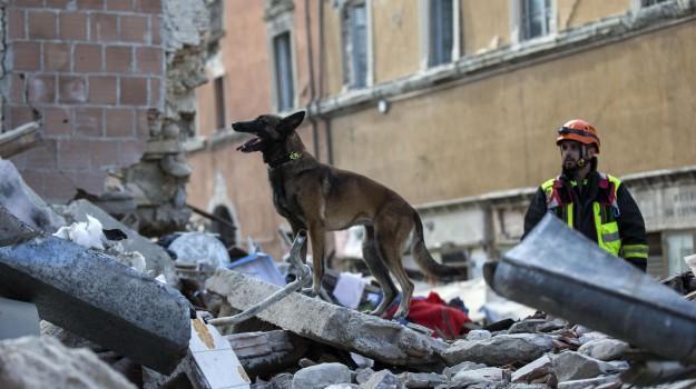 CROLLI, morti, sisma, terremoto, Sicilia, Cronaca