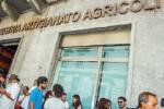 Camera di Commercio, a Trapani gli impiegati dichiarano lo stato di agitazione
