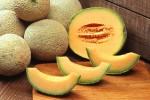 Rubano meloni, arrestati a Trapani padre e figlio minorenne