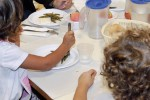 Refezione scolastica a Ragusa, bando per gestire il servizio