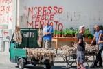 Blitz a Trapani, sequestri e multe nella zona del mercato ittico