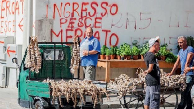 Blitz, mercato ittico, Trapani, Cronaca