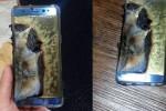 Dopo i casi di combustione, la Samsung sospende la produzione del Galaxy Note 7