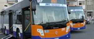 Autobus Amat Palermo