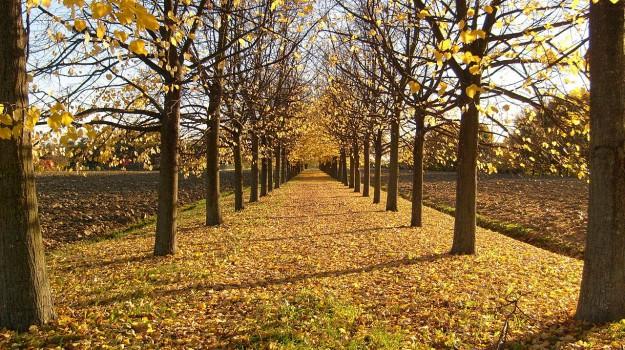 equinozio di autunno, Sicilia, Vita