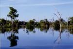 Pellicce, l'allarme: un secolo di caccia ha svuotato i fiumi in Amazzonia