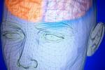 """Ricordi belli e brutti, il cervello li conserva in """"cassetti"""" diversi"""