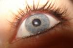 """Studio italiano: dopo la cecità, il cervello riattiva il """"software"""" della vista"""