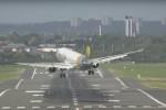 Vento troppo forte, l'aereo non riesce ad atterrare: la manovra in un video