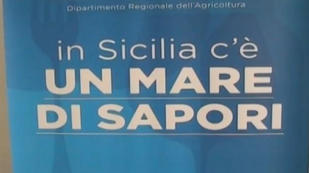 blue sea land, mazara, Trapani, Economia