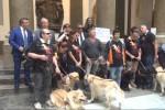Giornata del cane guida, una sfilata dimostrativa a Palermo - Video