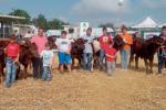 Fiera agroalimentare, premiate le aziende zootecniche: puntano sulla tradizione