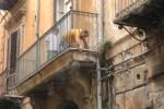 Palermo, palazzina in via Alloro rischia di crollare: in sicurezza