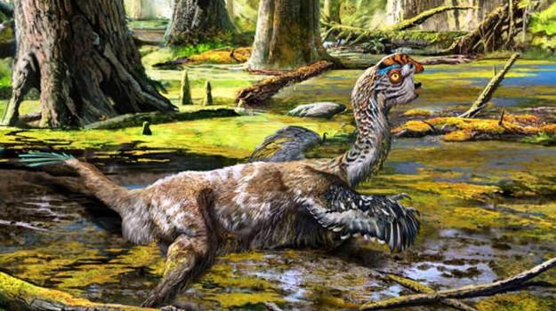 dinosauro, ritrovamento, Sicilia, Società