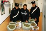 Campobello di Mazara, trovati più di 7 chili di marijuana: un arresto - Foto
