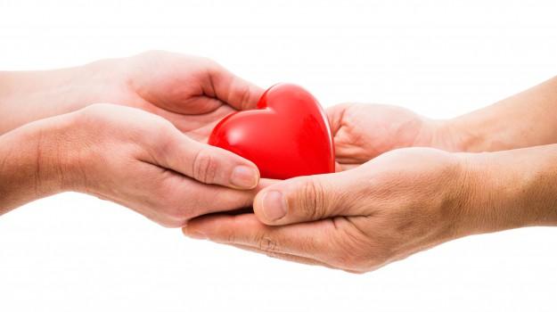 Donazione di organi 2977f4d0d2a