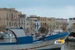 """""""Distretto della Pesca"""" di Mazara alla fiera mondiale di Bruxelles"""