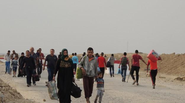 iraq, mosul, offensiva anti-isis, Sicilia, L'Isis, lo scettro del Califfo, Mondo