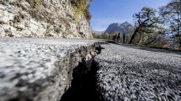 sisma centro italia, terremoto centro italia, terremoto Marche Umbria, terremoto norcia, Sicilia, Cronaca