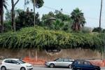 Siracusa, cede il muro di cinta a Villa Reimann