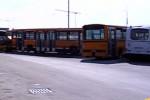 Bus, nuova modifica ai tragitti delle linee a Messina: sabato inizia la seconda fase