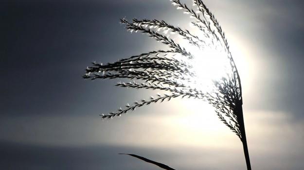 sole, solstizio d'inverno, Sicilia, Società