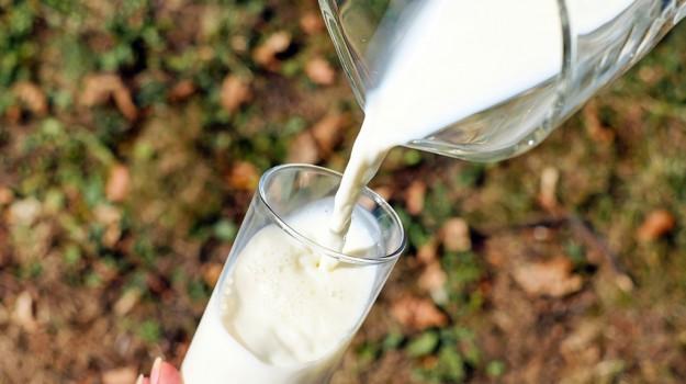 crisi del latte ragusa, Ragusa, Cronaca
