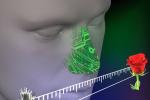 Costruito il naso elettronico: riconosce dall'odore decine di malattie