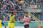 Incubo Palermo, così è arrivata l'ottava sconfitta al Barbera - Video